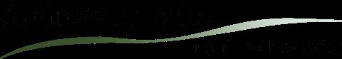 Andrew Flusche Logo